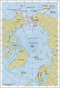 Beringia2005a4f171x244